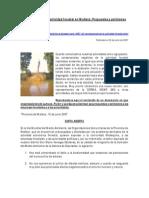 Consecuencias de La Actividad Foresta en Malleco, Propuestas y Peticiones