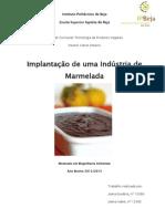 Implantação de uma Indústria de Marmelada.pdf