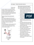 AV Fistula -What the Patient Needs to Know. In English