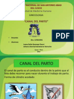 canal del parto.pptx