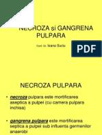12. Necroza Si Gangrena Pulpara