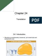 #18 Ch24 Translation