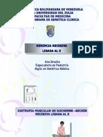 Resumen Pregra R y D LigX