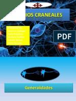 nervios-craneales