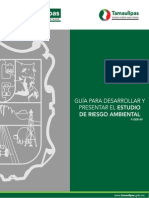 04. Guia Riesgo Ambiental