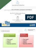 Presentación conferencia Cultivo de cálulas animales y procesos enzimáticos [Recuperado]