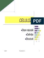 9 Celuloza Definitie Structura 1