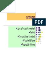 12_Lignina