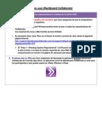 Manual Teleconferencia)