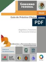 Guía Práctica clinica