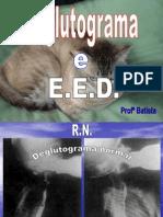 Deglutograma e E.E.D.