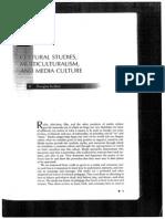 01 Kellner Cultural Studies Multiculturalism Media Culture