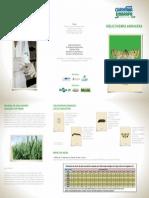 Folder TRIGO 15x21