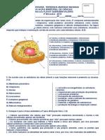 AVALIAÇÃO BIMESTRAL DE CIÊNCIAS 6 3b