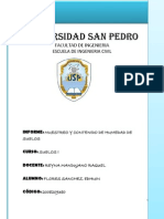 Universidad San Pedro