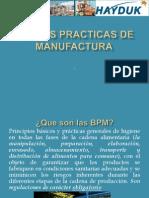 BPM Presentación1v