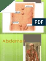Anatomía de la pared abdominal y hernias.