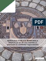 Ipp Raport Servicii Publice 2013