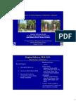 Salloway MCI Educational Forum 1-14rev__latest
