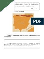 1.3 Teste Diagnóstico - Os Muçulmanos na Península Ibérica (3)