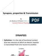 Lecture Synapses, Properties & Transmission Dr. Roomi