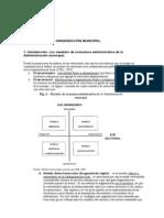 GOBIERNO Y ADMINISTRACIÓN LOCAL del estado español II