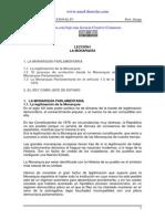 Derecho constitucional E Español