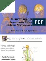 fisiologiadosistemanervoso-organizaofuncional-121110050208-phpapp01