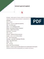 Glosar termeni agricoli engleză - română.doc