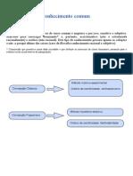conhecimentocomum.pdf