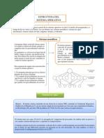 grafico resumen.docx