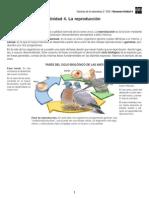 Acceso Directo a 2eso Ccn Es Ud04 PDF Resumen P.conectados