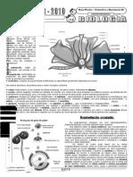 Angiosperma Biologia Floral