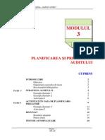 Modulul 3Planificare Pregatire Audit