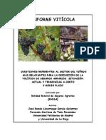 Informe Viticultura España