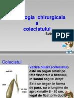 colecist