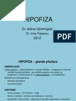 c3 Endocrinologie . Hipofiza Moase 2012