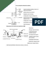 Principales elementos de una máquina ultrasónica sistema