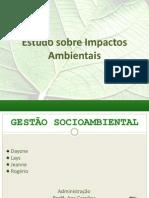 Estudo de Impacto Ambiental (1)