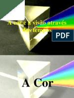 A Cor e a Vis_o Atrav_s Dos Tempos