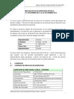Informe EJECUTIVO NOVIEMBRE 2013