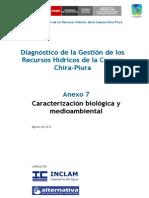 Diagnostico de La Gestion de Los Recursos Hidricos de La Cuenca Chira - Piura