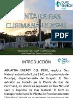 PLANTA DE PROCESAMIENTO DE GAS – DUKE ENERGY