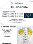 PCEM1 2008 Cours 8 Urogenital.ppt