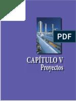 Cap 05 Proyectos[1]