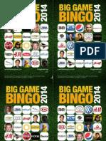 Big Game Bingo 2014