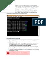 Iniciando o Interpretador de Comandos Linux