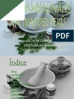 Plantas Medicinales Definitivo