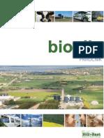Prirucnik Za Bioplin w