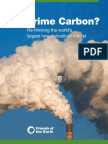 Friends of the Earth - Subprime Carbon Report